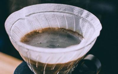 Que faire avec le marc de café dans son jardin ?